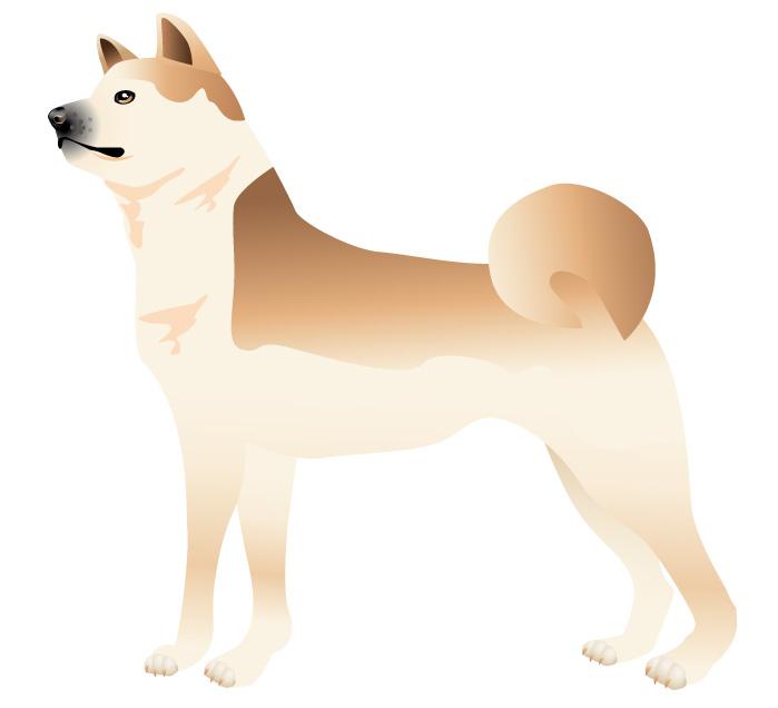 年賀状無料素材 年賀状のイラスト屋さん 日本犬のイラスト 5